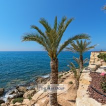 Mediterranean Sea at the bottom of your garden